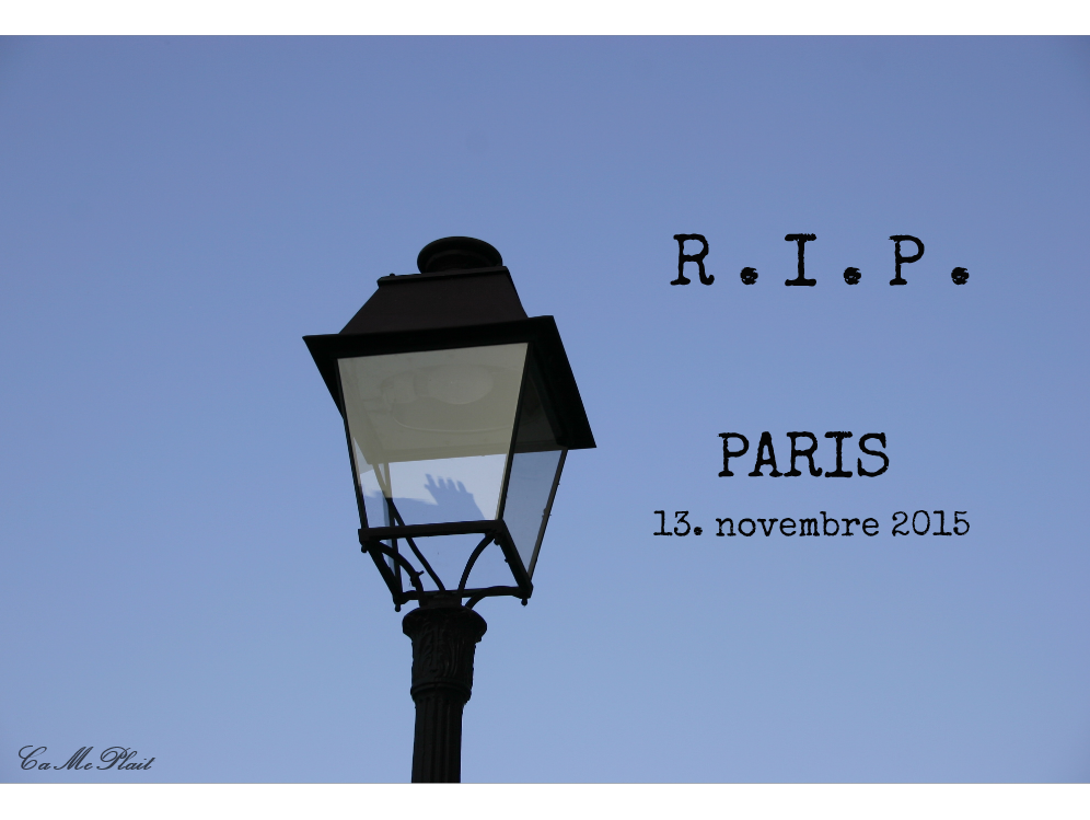 [PHOTO DU JOUR] #192 R . I . P . Paris